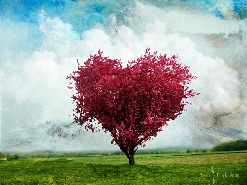 Un'immagine che mi sembra particolarmente evocativa della profondità del sentimento amoroso!